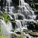Water Flows at Big Cedar by John Carpenter