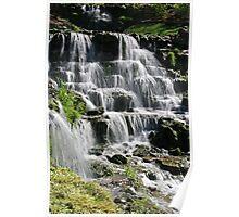 Water Flows at Big Cedar Poster