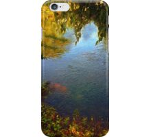 Sheltered Pond iPhone Case/Skin