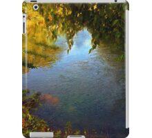 Sheltered Pond iPad Case/Skin