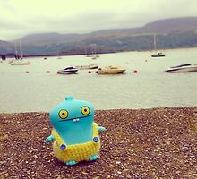 Babo uglydoll on holiday in Wales, UK. by FendekNaughton