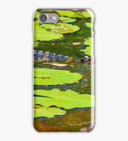 Small Gator in Pond at BG iPhone Case/Skin