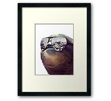 Big Money Sloth Framed Print