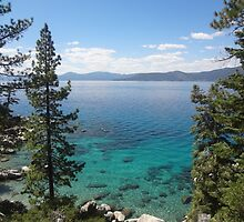 The Beauty of Lake Tahoe by KristinaL