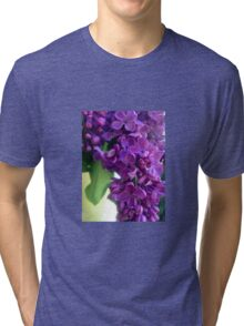 Lilac Beauty  Tri-blend T-Shirt