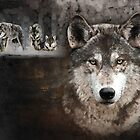 Wolf Gang by Marsea