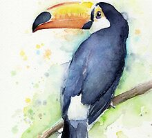 Toucan Watercolor Art by OlechkaDesign