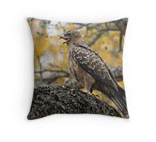 Wahlberg's Eagle Throw Pillow