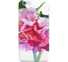 A Summer's Begonia iPhone Case/Skin
