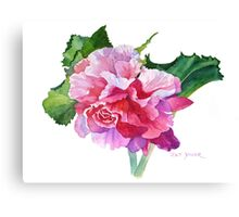 A Summer's Begonia Canvas Print
