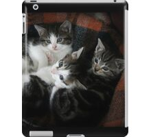 We 3 Kits iPad Case/Skin