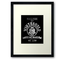 Skyrim - College Of Winterhold - College Jersey Framed Print
