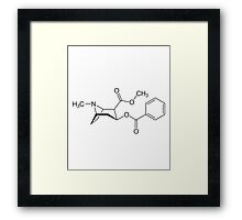 hemicaly Framed Print