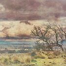 Stormy Tree Pastel Art by Candice84