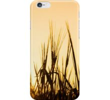 Barley Silhouette iPhone Case/Skin