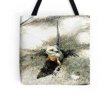 Australian Water Dragon Tote Bag
