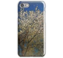 Get Frost iPhone Case/Skin
