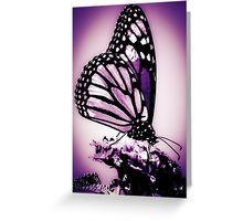 Monarch Butterfly, Purple Greeting Card