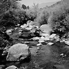 Running Water -- Rio Pueblo de Taos by Bill Wetmore