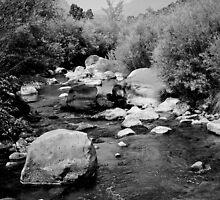 Running Water -- Rio Pueblo de Taos by njordphoto