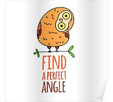 Owl wisdom. Find a perfect angle. Poster