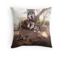 Dogs with game face on .35 Throw Pillow