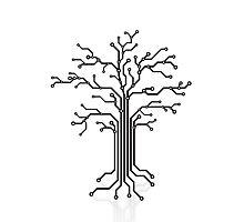Digital tree circuits concept art photo print Photographic Print