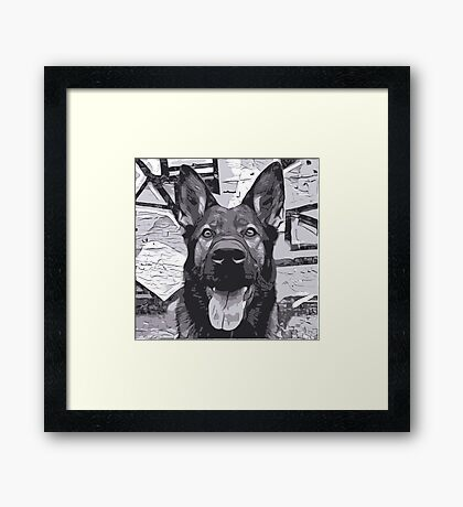 Grey Happy Shepherd Framed Print