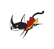 Super Cat to save the Day! Photographic Print