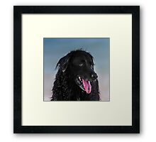Next time you go get the ball. Framed Print