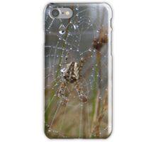 Dew Drops Spider Web iPhone Case/Skin