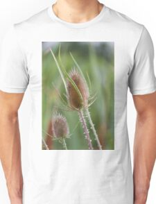 flower in summer Unisex T-Shirt