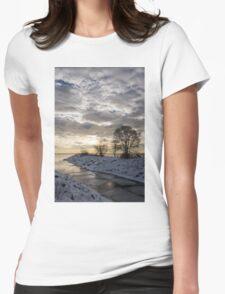 Broken Ice, Broken Clouds Womens Fitted T-Shirt