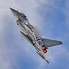 Eurofighter Typhoon (D-Day Stripes) by © Steve H Clark