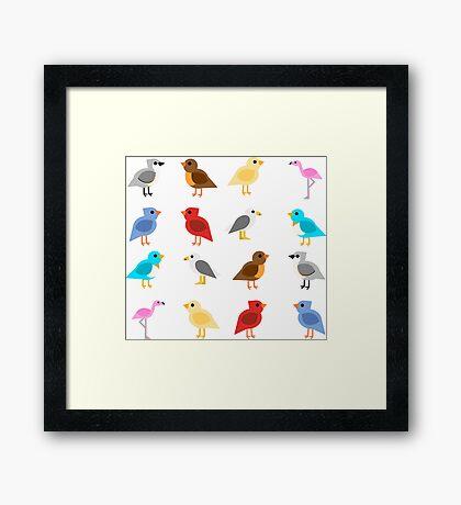 Birds Framed Print