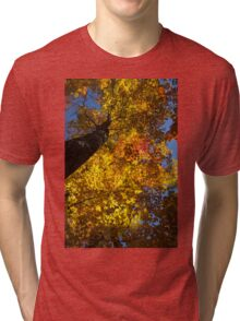 Hot Yellow Gold - Northern Autumn Splendor Tri-blend T-Shirt