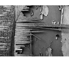 Splinters Photographic Print