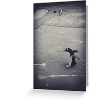 It's just a penguin Greeting Card