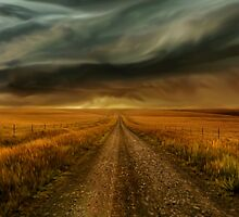 Nullarbor Plain by Cliff Vestergaard