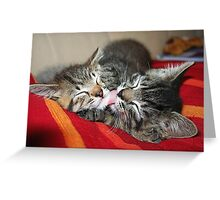 Kittens Sleeping Cuties Greeting Card