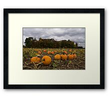 Getting Ready for Halloween Framed Print