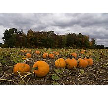 Getting Ready for Halloween Photographic Print