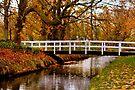 Autumn Stream Crossing by Jo Nijenhuis