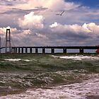 The Great Belt Bridge by Jo Nijenhuis