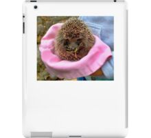 Tiny Hedgehog In A Hat  iPad Case/Skin