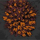thistle orange by andley
