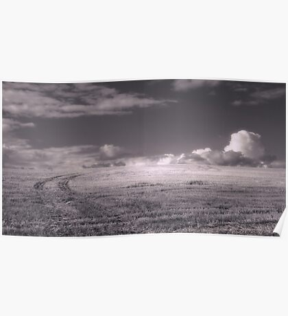 Sky Field Poster
