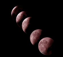 Phases of Lunar by wildrider58