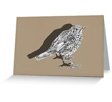 songthrush shadow Greeting Card