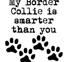 My Border Collie Is Smarter Than You by kwg2200